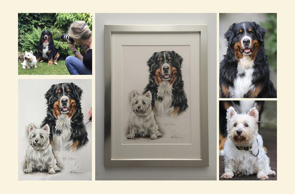 Vom Foto bis zum fertigen Hundeportrait