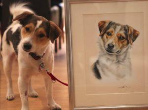 Portraitzeichnung Jack Russell Terrier Aquarell