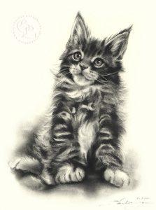 Katze_07_sw_a_o