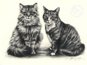Katze_l_14_sw_o