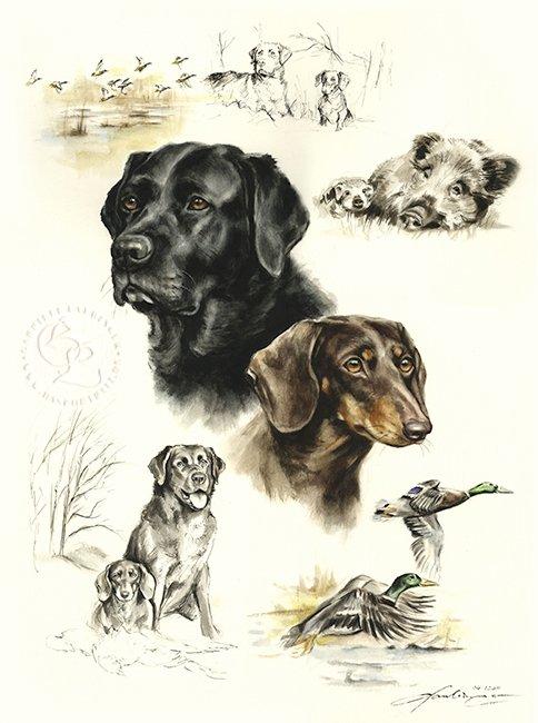 Labradordackel Aquarell   Hundeportrait