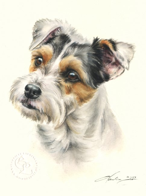 Parson Russell Terrier  Aquarell   Hundeportrait