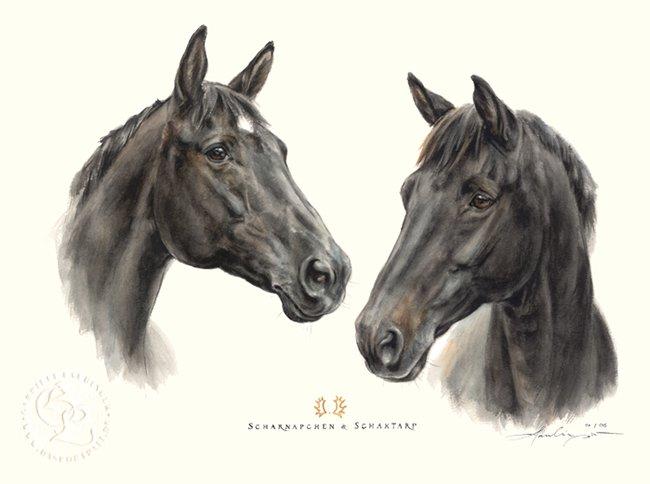 Trakehner Aquarell Pferdeportrait